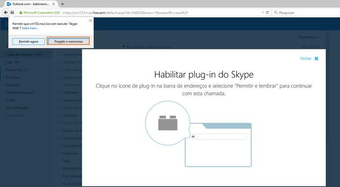 Permita a ação do plugin do Skype no navegador (Foto: Reprodução/Barbara Mannara)