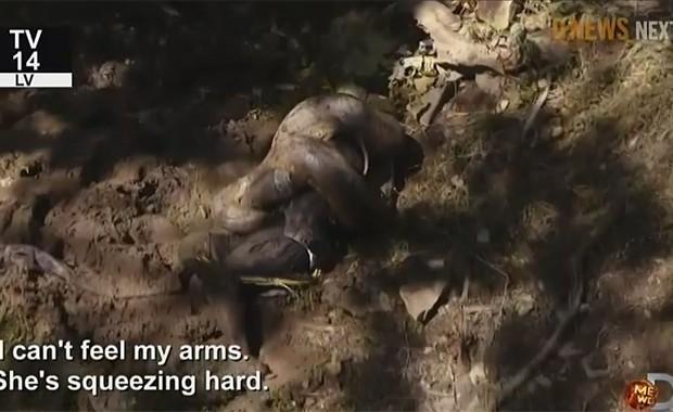Apresentador do programa norte-americano 'Eaten alive' é envolvido por anaconda em episódio final do programa (Foto: Reprodução / Discovery Channel)