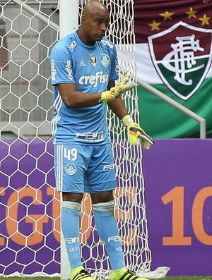 Jailson Palmeiras x Fluminense (Foto: Cesar Greco/Ag Palmeiras/Divulgação)