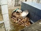 Restos de ossada humana são deixados a céu aberto em Mutuípe