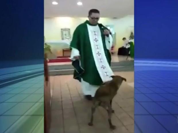 Cão brincou com vestimenta do frei durante missa (Foto: Reprodução / TV TEM)