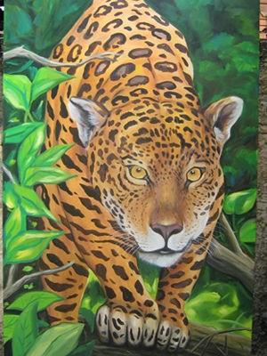Exposição 'Fauna Mata Viva'. (Foto: Victor Hugo/Arquivo pessoal)