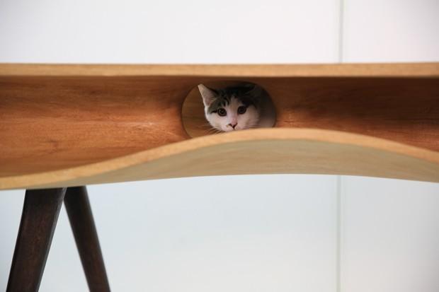 Escrivaninha com túneis para gatos brincarem (Foto: Divulgação)
