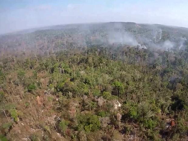 Um terço da reserva indígena foram consumidos pelas queimadas (Foto: Reprodução / TV Mirante)