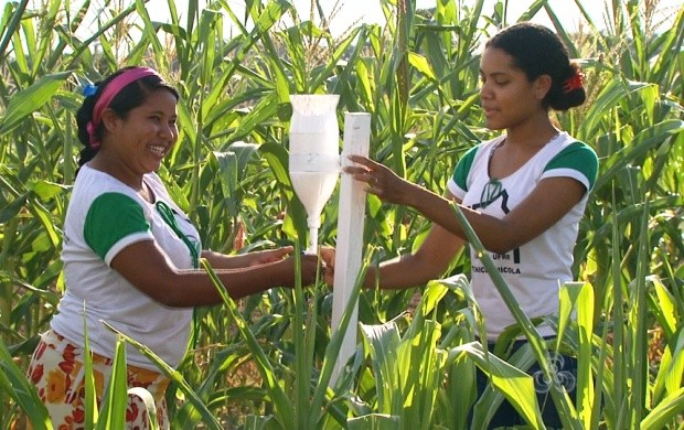 Alunos da Universidade Federal de Roraima criam pluviômetro (Foto: Roraima TV)
