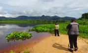Globo Repórter mostra o Pantanal de Mato Grosso do Sul e de Mato Grosso