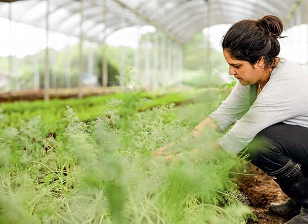 A chef Manu Buffara visita horta da Chácara Engenho Verde, em Colombo (PR) (Foto: Divulgação)