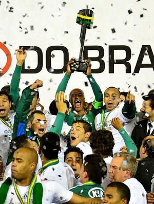 Palmeiras campeão da Copa do Brasil (Foto: Marcos Ribolli / Globoesporte.com)