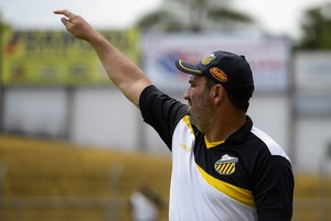 Guilherme Alves, técnico do Novorizontino (Foto: Wiliam Brás de Lima / Grêmio Novorizontino)
