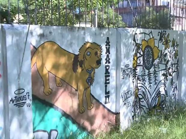 Cachorro adota escola em Uruguaiana e tem tratatamento pago por alunos, Amarelo foi pintado em muro da escola (Foto: Reprodução/RBS TV)