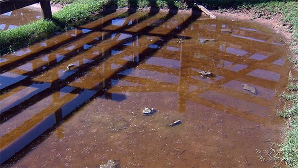 Técnica visa, principalmente, a economia de água (Foto: Reprodução/TV Fronteira)