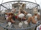 Ativistas protestam em Viena contra uso de animais em experimentos