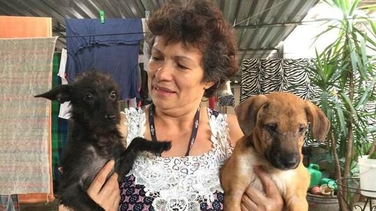 Com 80 animais em casa, protetora resgata cães e gatos na Cracolândia