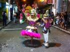 Escolas de samba homenageiam artistas (Moisés Soares/ TV TEM)