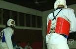 Atletas de Taekwondo estão se preparam para Copa Denitai