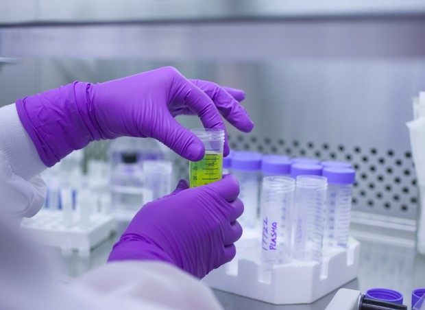 Célula tronco; laboratório;  (Foto: Thinkstock)