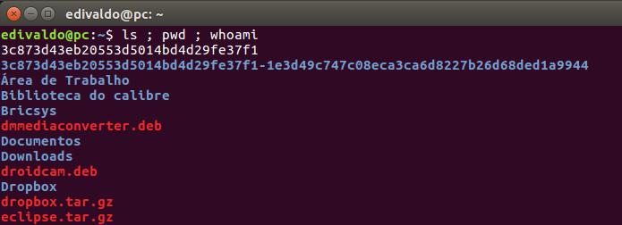 Executando três comandos em sequência no terminal do Linux (Foto: Reprodução/Edivaldo Brito)