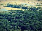 Prefeitura de Guarapuava passa a emitir licenciamento ambiental