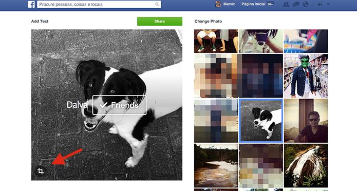 Adicionando um texto ou emoji a uma foto do Facebook que será marcada com a tag Friends (Foto: Reprodução/Marvin Costa)
