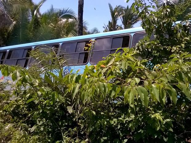 Ônibus invade matagal após tentativa de assalto na zona rural de São Luís (Foto: Jadson Garcês)