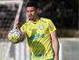 Com Moisés, Palmeiras relaciona 23 jogadores para enfrentar o Botafogo