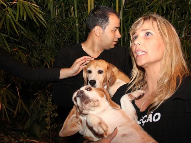 Cerca de cem ativistas de diversas ONGs que cuidam de animais, invadem o laboratório Royal, em São Roque, e libertaram 150 cachorros (Foto: Edison Temoteo/ Futura Press/ Estadão Conteúdo)