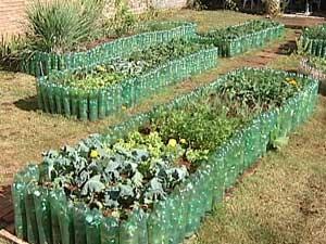 Horta com garrafas pet (Foto: Reprodução/TV Integração)