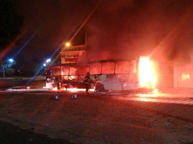 Bombeiros controlaram fogo, mas ônibus ficou destruído (Foto: TEM Você)