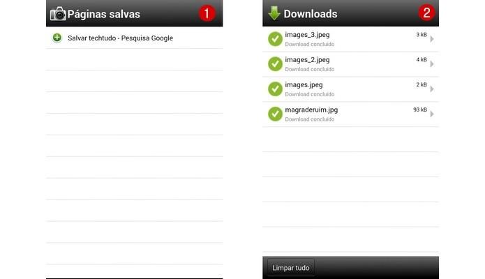 Telas de Páginas salvas e Downloads (Foto: Reprodução/ Raquel Freire)