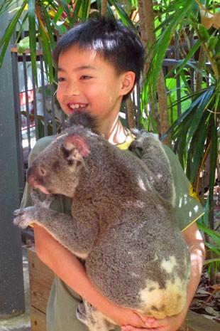 Menino tira foto abraçado a coala em Hamilton Island (Foto: Flávia Mantovani/G1)