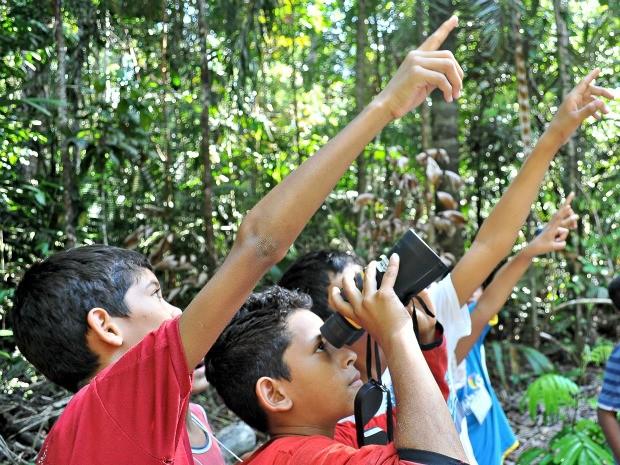 Projeto 'Verde Perto' trabalha com cerca de 50 crianças das escolas da rede municipal de Manaus (Foto: Museu da Amazônia / Vanessa Gama)