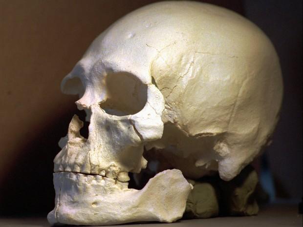 Imagem de 1997 mostra uma reprodução de plástico do crânio do homem de Kenniwick. O esqueleto antigo achado há 20 anos mostra proximidade com indígenas da América do Norte, de acordo com a análise de DNA feita por cientistas (Foto: Elaine Thompson/AP)