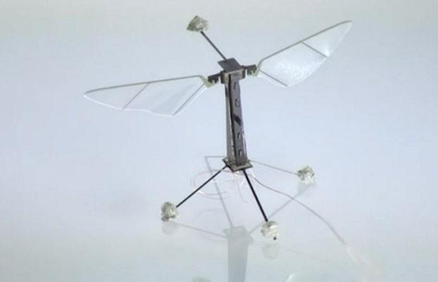 O robô de fibra de carbono é tão ágil quanto uma mosca (Foto: BBC)
