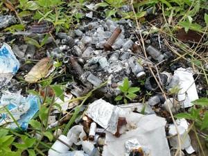 Fiscalização encontrou lixo hospitalar despejado em terreno baldio  (Foto: Divulgação/MP)
