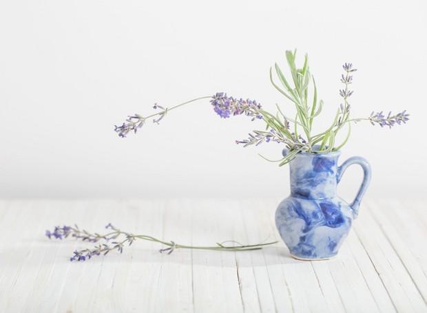 8-plantas-flores-ajudam-dormir-melhor-quarto (Foto: Thinkstock)