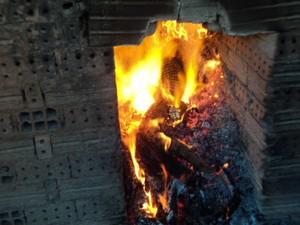 Animais incinerados por não estarem próprios para o consumo (Foto: Assessoria Polícia Militar de Meio Ambiente)