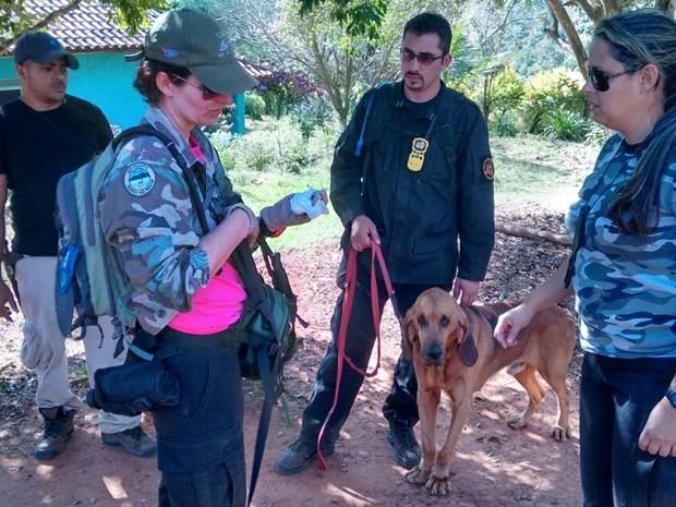 Ana Albernez (centro) coordenou buscas com cão Bruno (Foto: Carlos Alberto Soares/ TV TEM)