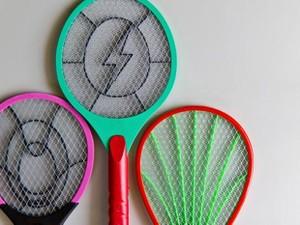 Imóveis mosca_raquete (Foto: Shutterstock)