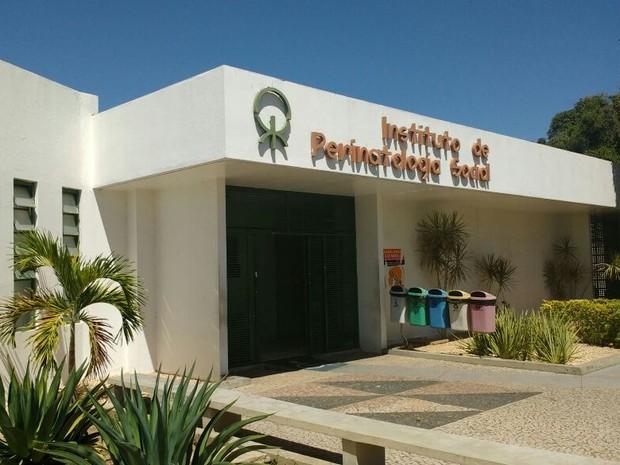 Instituto de Perinatologia do Piauí, em Teresina  (Foto: Fernando Brito/G1)