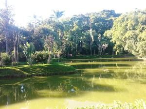 Visita guiada Parque Museu Juiz de Fora 17 (Foto: Roberta Oliveira/G1)