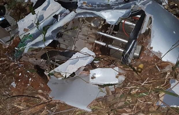 Destroços do avião ficaram espalhados em plantação de bambu em Pirenópolis, Goiás (Foto: Divulgação/Corpo de Bombeiros)