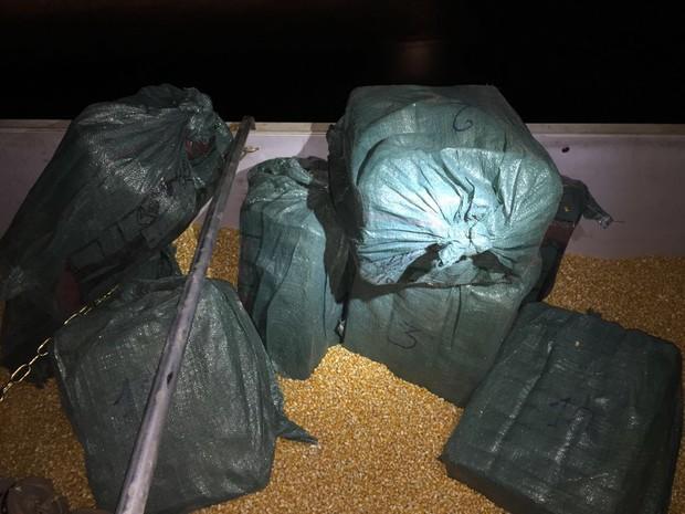 Motorista é preso com 471 kg de cocaína dentro de carga de milho (Foto: Assessoria/Polícia Federal de MT)