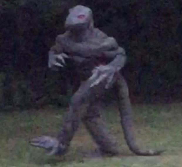 Mulher alega ter fotografado 'homem-lagarto' na Carolina do Sul (Foto: Reprodução/Twitter/Darren Naish)