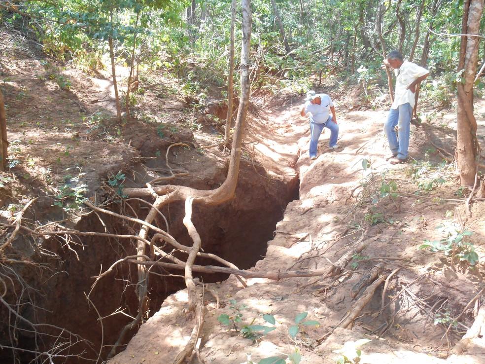 Moradores se preocupam com o risco de animais caírem na cratera (Foto: Edvaldo Ferreira/Defesa Civil)