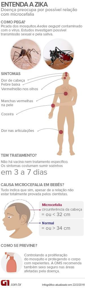 Infográfico entenda a zika - arte (Foto: Editoria de arte/G1)