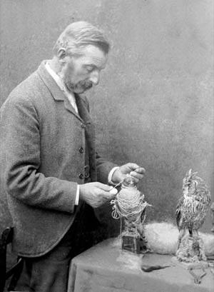 Potter, que morreu em 1918, começou a aprender a taxidermia ainda garoto, aprendendo a preservar corpos de pássaros e animais. Logo após deixar a escola, de início à sua coleção particular (Foto: Pat Morris/Joanna Ebbenstein )