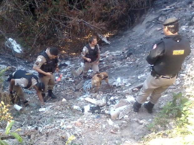 cão farejador foi usado durante operação conjunta entre a Polícia Militar e a Polícia Civil de Bom Despacho MG (Foto: Polícia Militar/Divulgação)