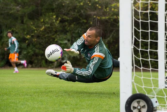 Diego Cavalieri Fluminense (Foto: Bruno Haddad / Fluminense)