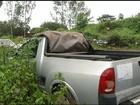 Pátio de carros abandonados vira criadouro de Aedes aegypti no TO