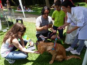 Maria Lúcia levou o cão Bartolomeu ao parque e aproveitou para implantar o microchip nele (Foto: Daiane Baú/G1)